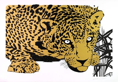 KLEBER VENTURA, 'Yellow Jaguar', 2010-2016