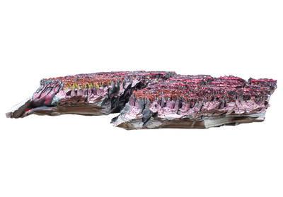 Bernardo Montoya, 'Fragmento del Purgatory Planet —prueba recogida en el séptimo giro— cañon de las delicias, Instituto Arte y Maravillas', 2018