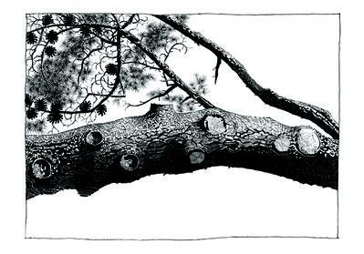 Jamie Hewlett, 'Pine 8', 2015