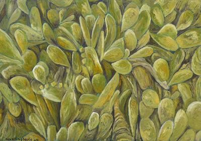 Fouad Agbaria, 'Cactus Wall', 2012