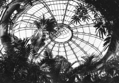 Penelope Stewart, 'Apparition I, photo on glass', 2014
