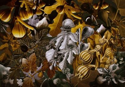 Camila Rocha, 'Garden of Suspended Seeds of Ficus Carica', 2014