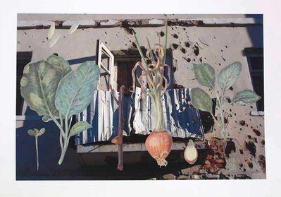 Nikita Kadan, 'Protection of Plants', 2014-2015