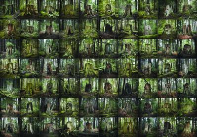 David Ellingsen, 'Four Point Four Acres', 2014
