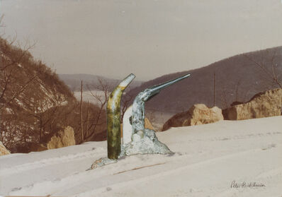 Peter Arthur Hutchinson, 'Tubes Overlooking Hudson Valley', 1968