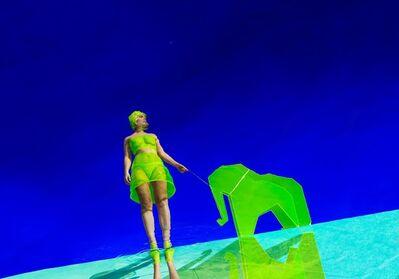 Reine Paradis, 'Elephanto', 2018