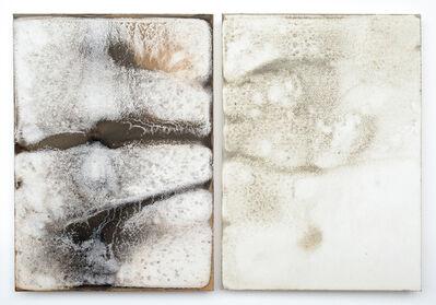 Shinji Turner-Yamamoto, 'Sidereal Silence: Irish Study #36 (diptych)', 2015