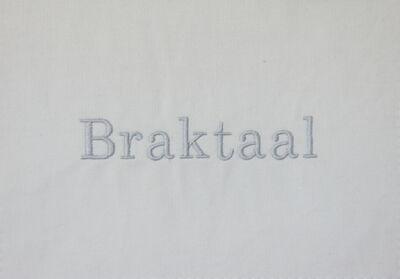 Lien Botha, 'Braktaal', 2019