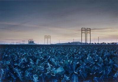Marcus Doyle, 'Ventura, CA, Christmas Eve (Broccoli Field)', 2002/2004