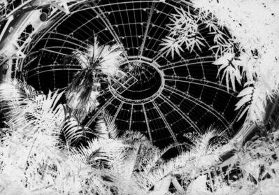 Penelope Stewart, 'Apparition II, photo on glass', 2014