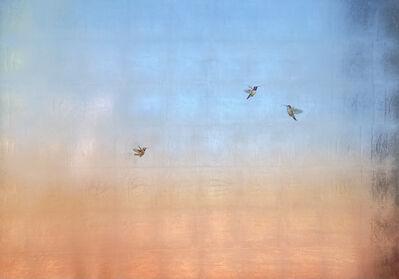Carolyn Reynolds, 'Three Hummers at Dawn III', 2021