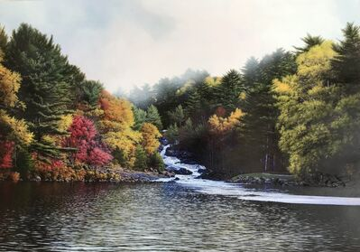 Michael French, 'Mist, Rosseau Falls, Morning', 2020