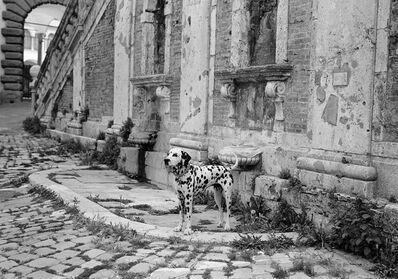 Mark Steinmetz, 'Perugia, Italy', 1993