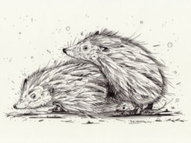 DZIA, 'Hedgehog loving', 2019