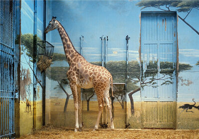 Candida Höfer, 'Zoologischer Garten Paris II 1997', 1997