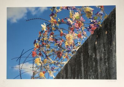 ICY and SOT, 'Imagine a world without borders II'