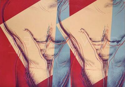 Andy Warhol, 'Torso (Double) (FS IIIA.35)', 1982