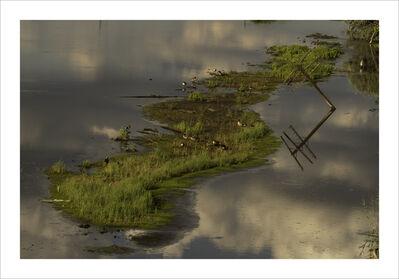 Joan Lemler, 'Ducks and Poles', 2018-2019
