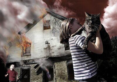 Tom Chambers, 'Fire Cat', 2001