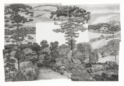 Francisco Faria, 'New Spread: Hills From the South (Von Martius Variations)', 2014