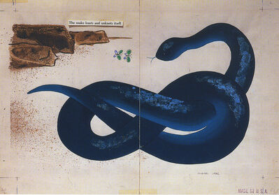 Bruno Munari, 'The Snake (Zoo)', 1962