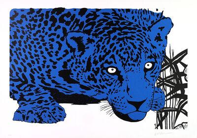 KLEBER VENTURA, 'Blue Jaguar', 2010-2016