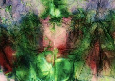 Maya Freelon Asante, 'Balance 2 (diptych)', 2017