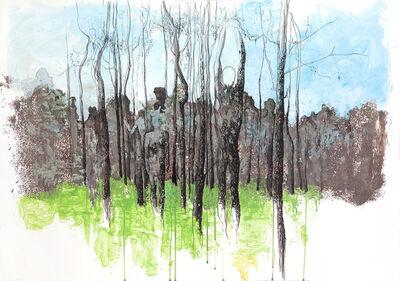 Tuğçe Diri, 'Untitled ', 2015