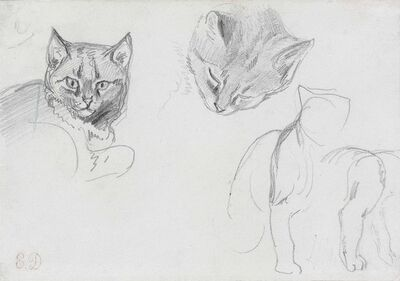 Eugène Delacroix, 'Two studies of a cat's head, with subsidiary sketches of a seated cat'