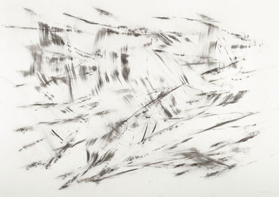 herman de vries, 'untitled', 2013