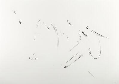herman de vries, 'untitled (v-2011)', 2011