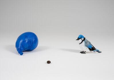 David Adamo, 'Untitled (blue jay, M&M, and balloon)', 2014