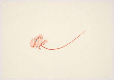 Valerie Hammond, 'Little Bird', 2011