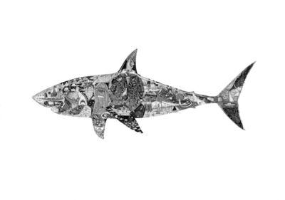 Christo Du Toit, 'Shark - Original Ink Drawing '