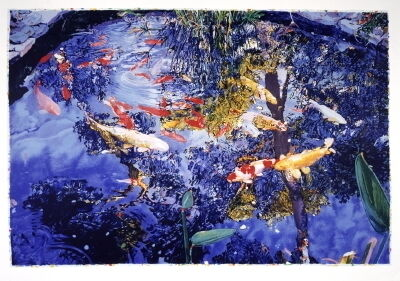 Joseph Raffael, 'Pond with goldfish', 2004