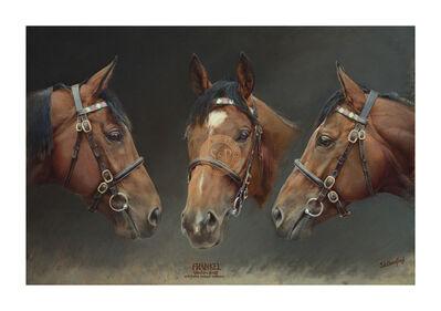 Susan Crawford, 'Frankel (Undefeated Brilliant Racehorse)', 21st Century