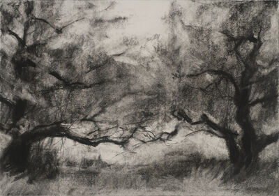 Connie Hayes, 'Orchard #3'