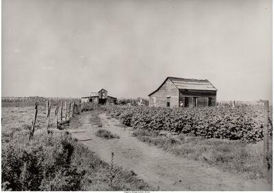 Dorothea Lange, 'Farm', circa 1936