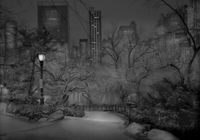 Michael Massaia, 'South View #2 - Deep In A Dream - Central Park', 2012