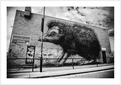 Jon Furlong, 'ROA - London 2012', 2017