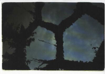 Mika Ninagawa, 'noir', 2010