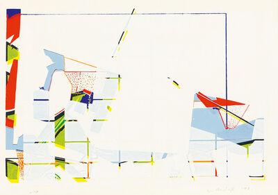 Willem Boshoff, 'Exploration 1'