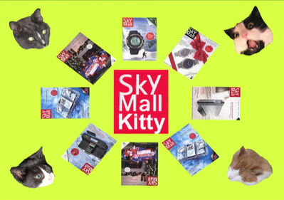 Nina Katchadourian, 'Sky Mall Kitties', 2010