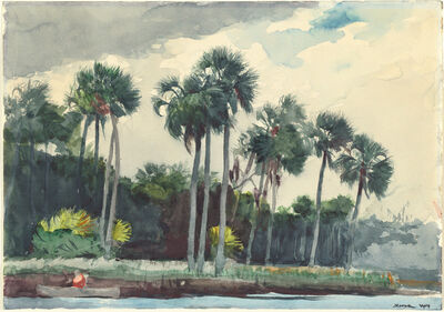 Winslow Homer, 'Red Shirt, Homosassa, Florida', 1904