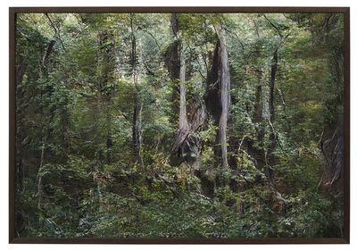 Andreas Greiner, 'Jungle_Memory_1001', 2020