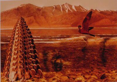 Sheba Chhachhi, 'Untitled ', 2007