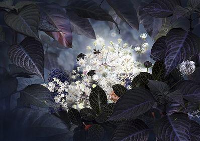 Ruud Van Empel, 'Floresta Negra #3', 2018
