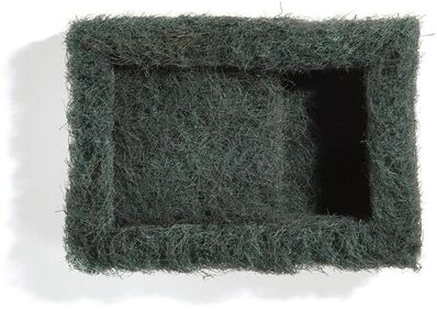 Richard Artschwager, 'Hair Box (Parckett 23)', 1990