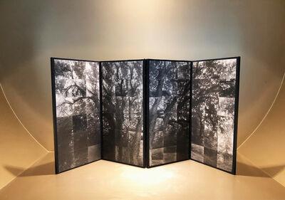 Takeshi Shikama, 'Oak #1', 2016