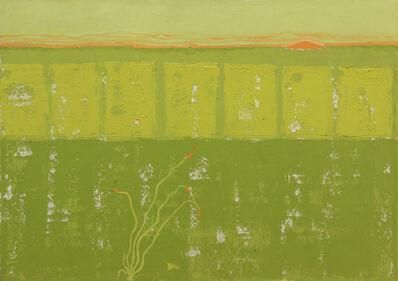 John De Puy, 'Spring, Northern Sonora', 1995